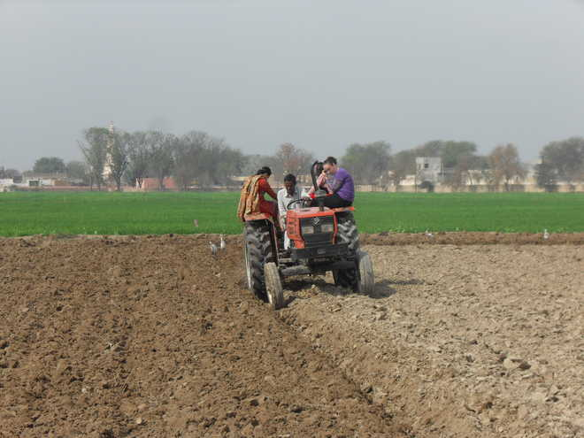 Years on, no relief to farmers for shunning stubble-burning