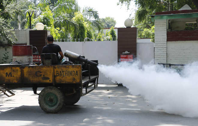 Dengue scare: MCB plans to buy new fogging machines