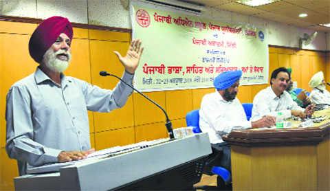 Experts dwell upon Punjabi culture