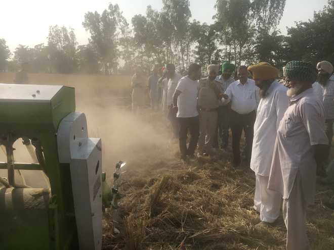NGO stops farmers from burning stubble