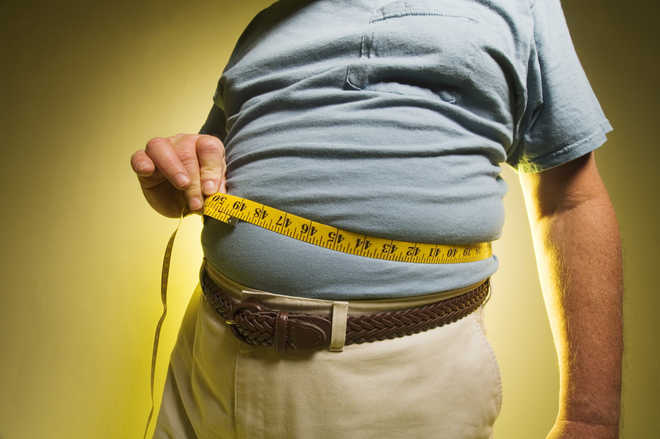 High carbohydrate diet may induce obesity in some