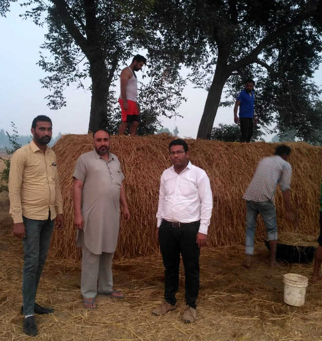 Muktsar farmers turn paddy stubble into compost