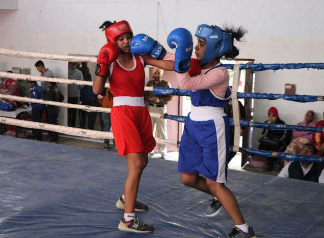 Pugilists Deliver Power Packed Show