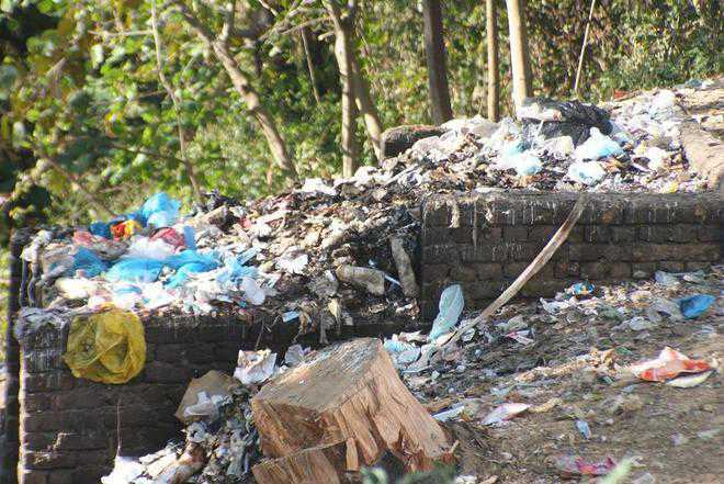 Kangra forest a plastic dumping ground