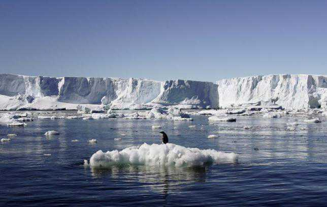 Extreme weather turning Arctic brown, may impact climate change: Study