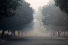 A man crosses a road on a smoggy morning in New Delhi, November 8. Reuters