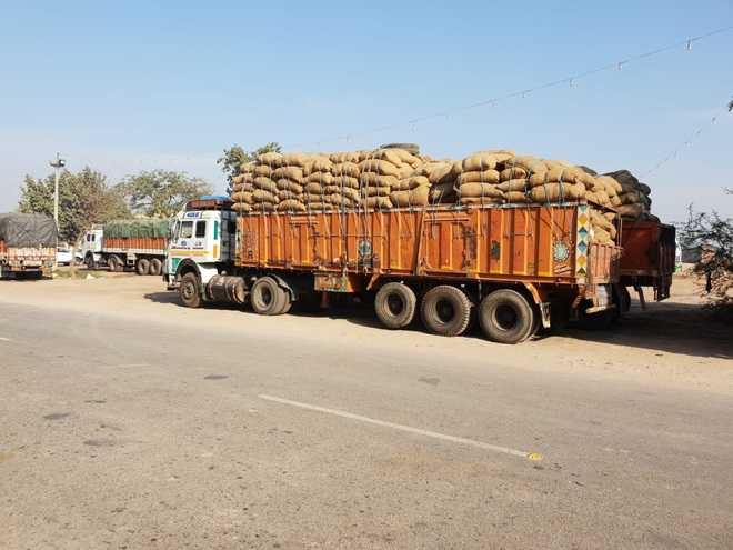 3,000 bags of paddy, rice seized in Barnala