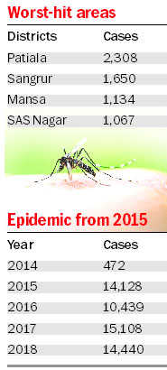 14,000 dengue cases for third time in 4 years