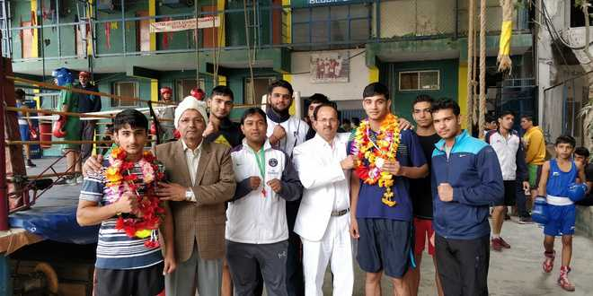 Sonepat boxers bag gold in national meet
