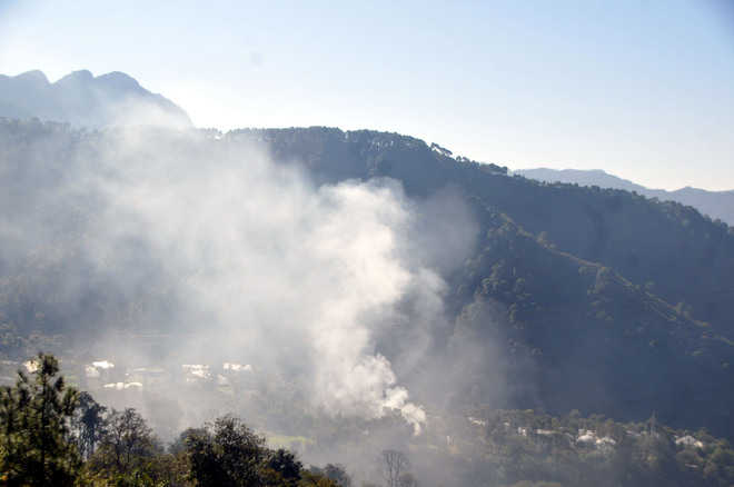 Burning of twigs, dry leaves polluting state apple belts