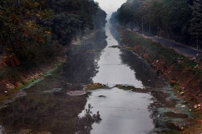 Water crisis intensifies as Sirhind canal closure extended
