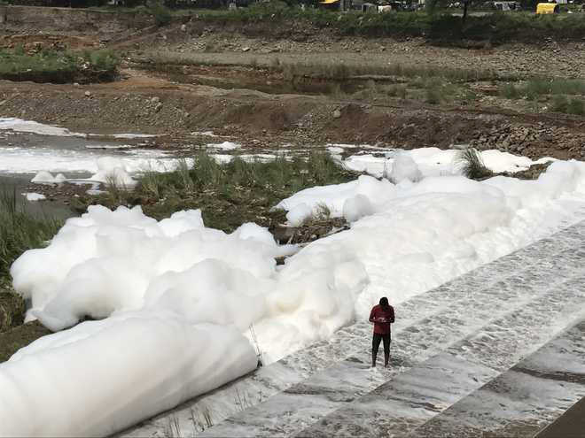 NGT seeks report on froth in Baddi river
