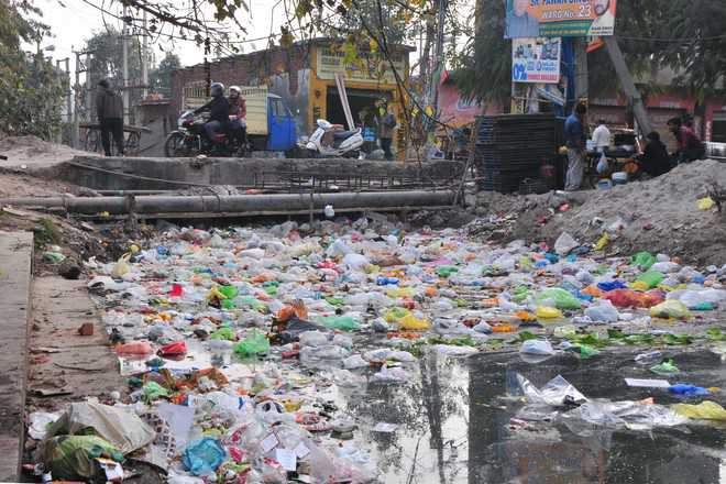 Mayor vows to make Jammu polythene-free next year