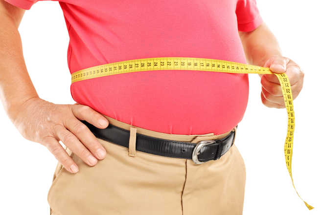 Tweaking gut bacteria may cut obesity, diabetes risk