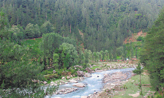 Water, forests are our lifeline; save them
