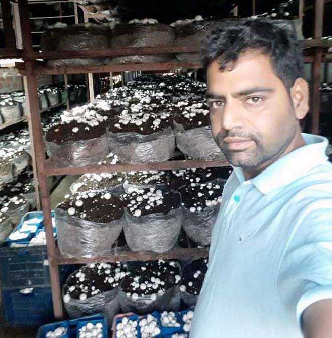 Mushroom producer a role model for jobless