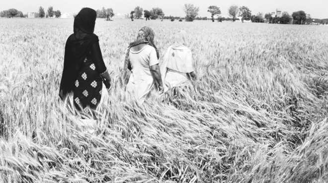 Daughters without land