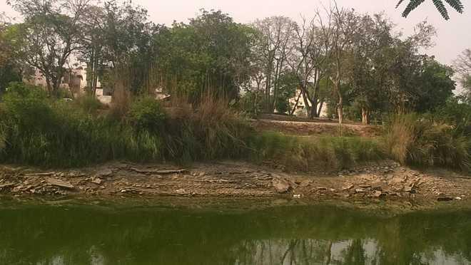 Indira Gandhi, Sirhind canal banks decay