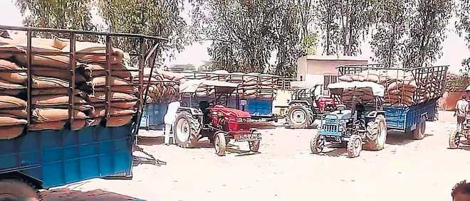 Row hinders unloading of wheat in Fazilka town