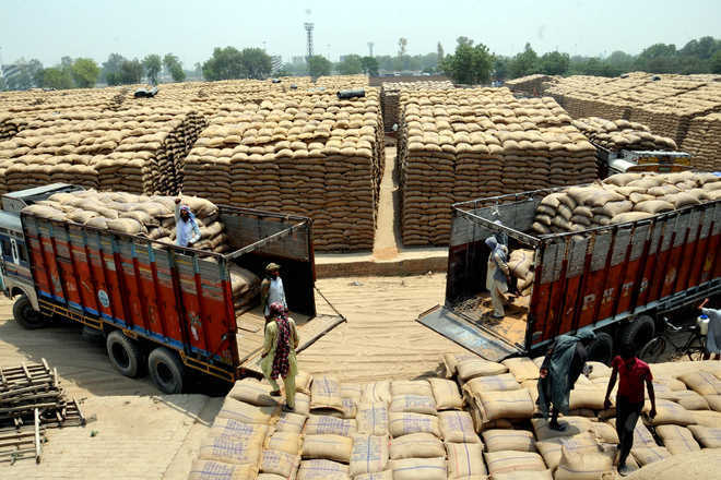 Wheat purchase by FCI set to stay below 20 per cent