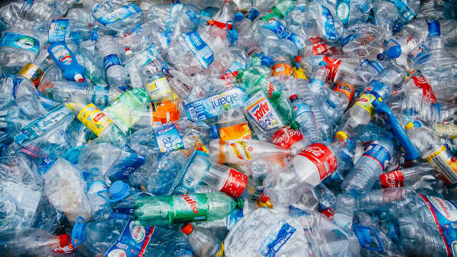 Scientists accidentally develop plastic-eating enzyme