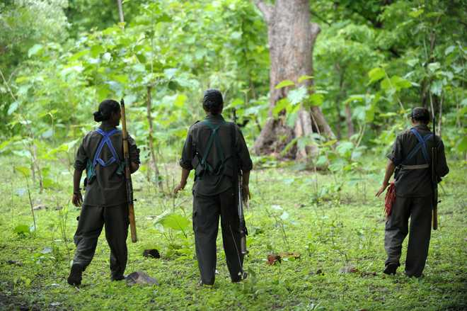 Dreaded woman Naxal surrenders in Gadchiroli