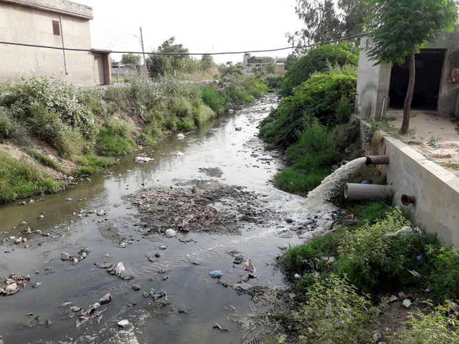 In Moga, untreated sewage flowing into water bodies