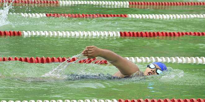 Jhanvi first in 800-m freestyle category