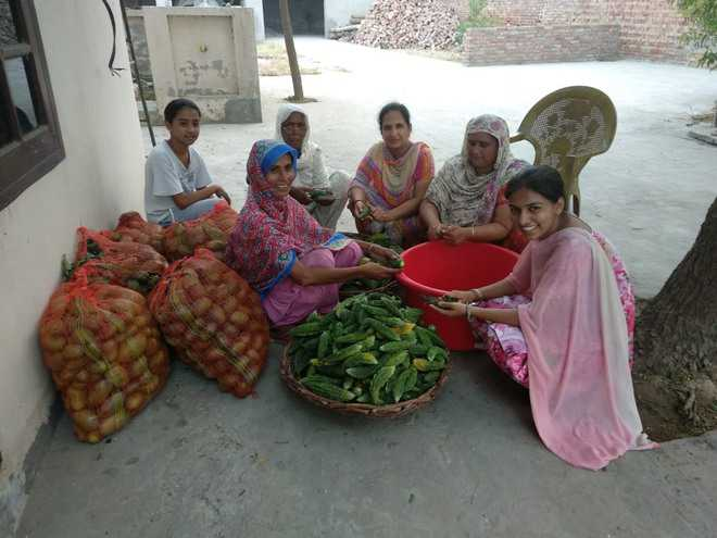 Success boosts self-help group's morale