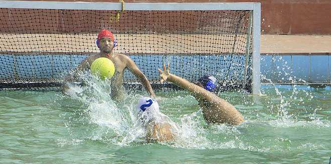 Sangrur bags the overall trophy