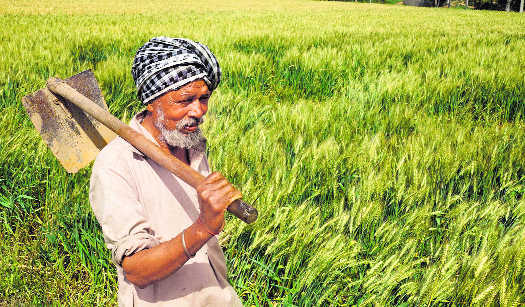 Image result for latest images of Karnataka To Waive More Crop Loans Of Farmers