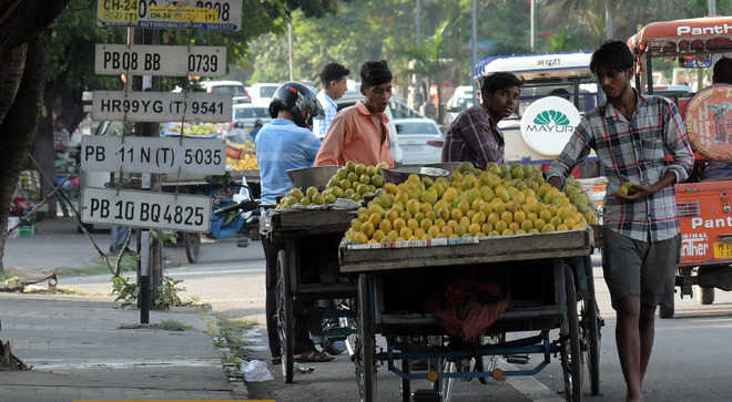 Number of street vendors pegged at 3,902
