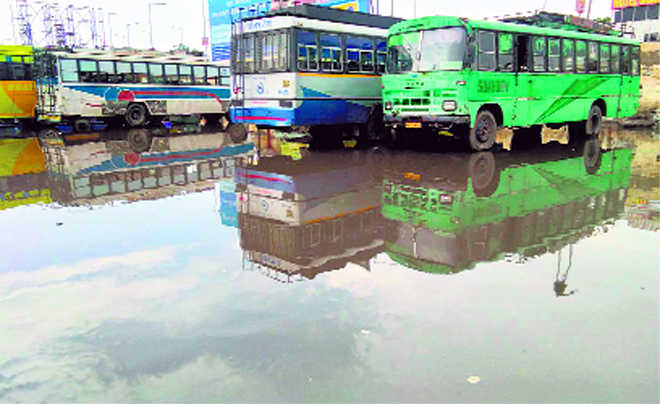 Brief spell of rain leaves  city areas waterlogged
