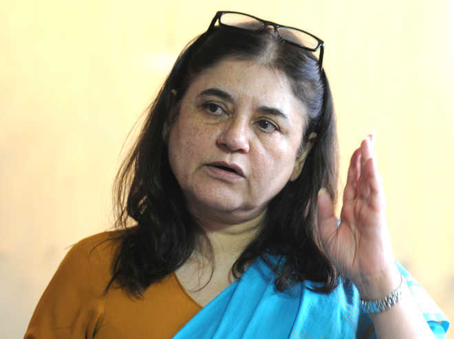 7 Bollywood production houses have formed anti-sexual harassment cells: Maneka