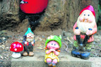 On the gnome trail in Mt Buller