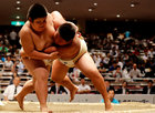 Young sumo wrestlers