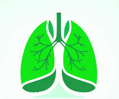 Lung cancer no more a smoker's disease: Study