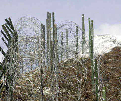 BSF officer injured in Pakistan firing on LoC