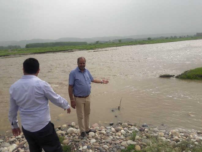 HPPCB blames Punjab unit for fish death