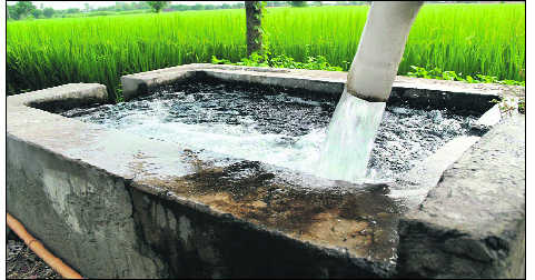 'Dry' Punjab draws 1.5 times the water  that goes in ground