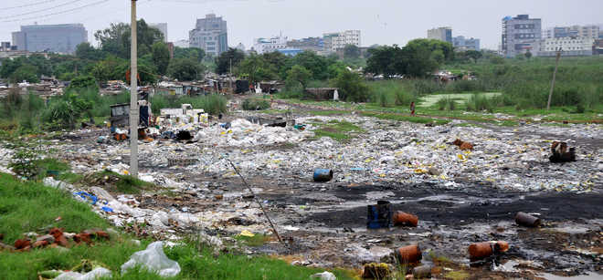 Garbage an eyesore in Phase 8 colony