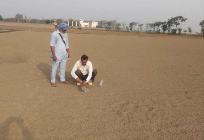 Farmers get soil of their fields tested