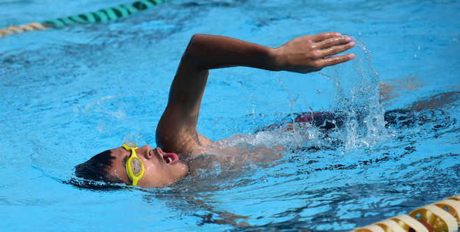 61 swimmers attend selection trials