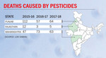 Pesticide: The silent killer