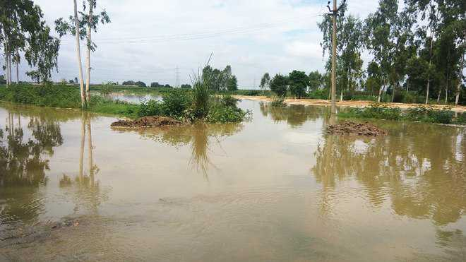 Canal breach wreaks havoc in Karnal villages