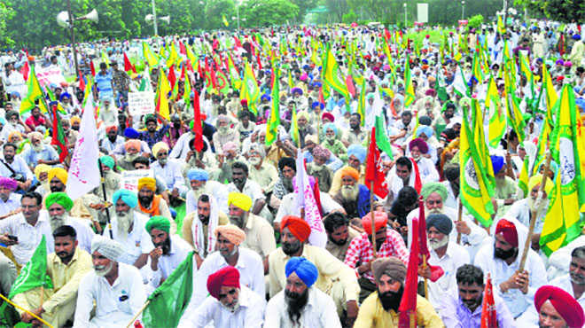 Farmers, employees back rights activists