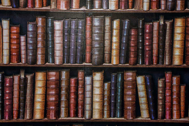 Losing to find oneself among books