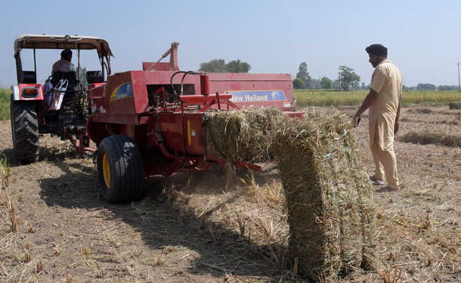 Brace for poor air, farm fires may continue