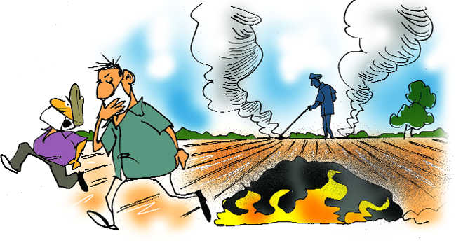 In Punjab & Haryana, stubble into ethanol after two years