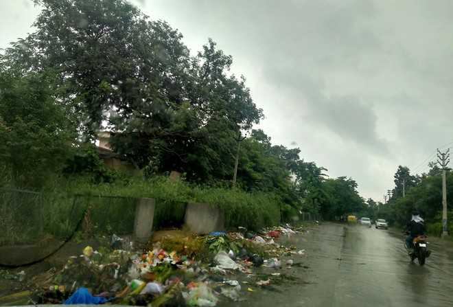 Cleanliness drive in 'smart city' Faridabad goes down the drain